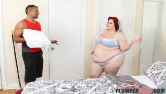 Plumperpass - Wedding Day Laid